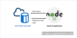 SAP HANA Cloud Node JS Client